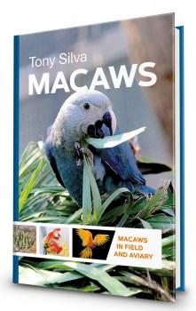 macaws44